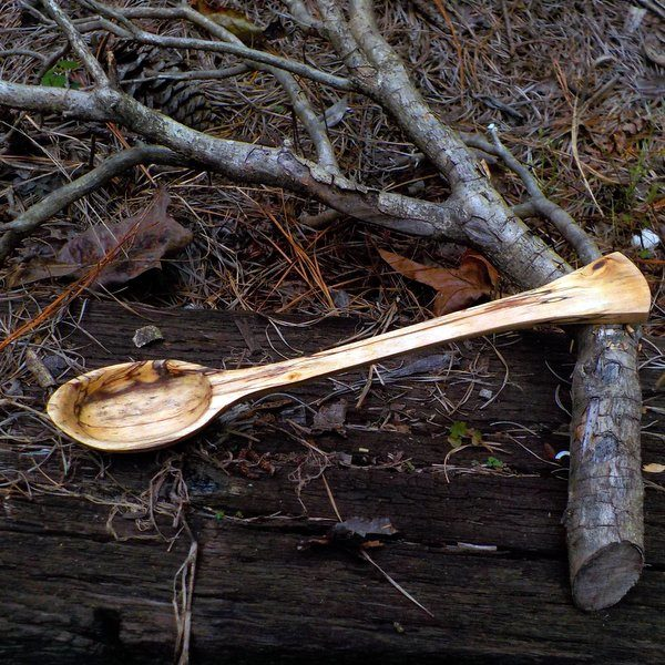 spoon004